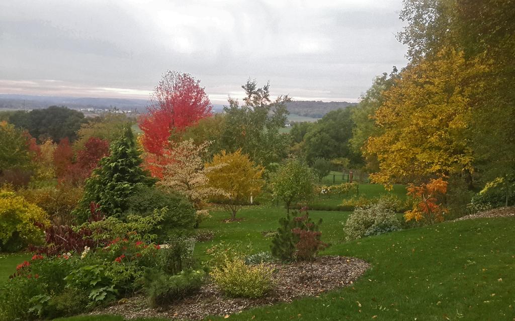 Les quatre saisions le jardin des monterelles for Le jardin des 4 saisons albi